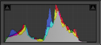 RAW histogram - showing a good spread of tones recovered from the highlights