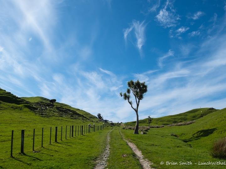 New Zealand - Cape Farewell